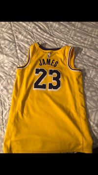 Lakers lebron jersey