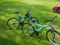 His and hers bikes for sale  Glenwood, 60425