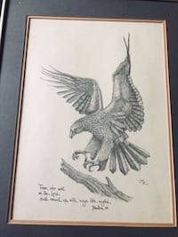 Hand Sketched Eagle Drawing