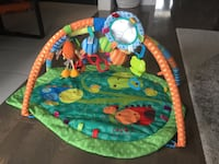 Baby play gym Caledon, L7C 4A1