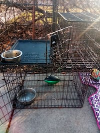 Steel Dog Cages