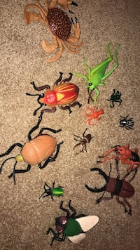 Mastermind toys bugs-great condition Hamilton, L9G 1S6