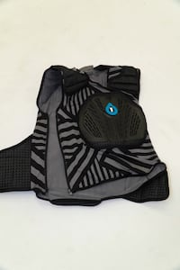 661 chest and spine protector mountain bike size Large/xl Kelowna, V1Y