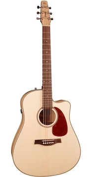 Seagull Performer CW Flame Maple HG QI Guitar, It originally was $820