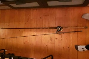 Fishing rod and reel setup