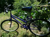 purple and black mountain bike