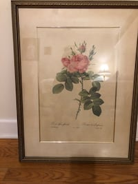 The Rose Vintage Original Frame Chicago, 60612