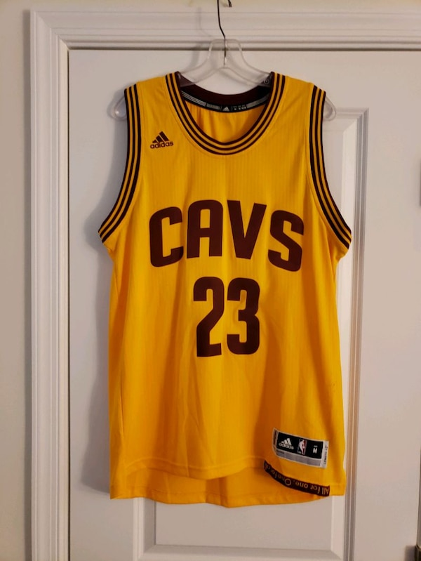 LeBron James Swingman Cavs Jersey f4b51379-50ea-43ce-9086-54b8da15be85