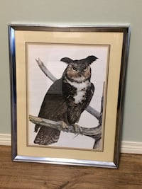 Large Framed Owl Picture