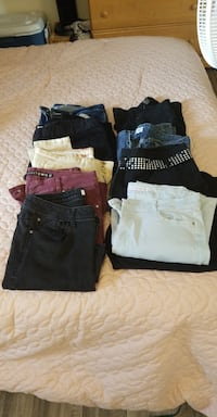 9 pairs of women's size 12 pants. take all for $25