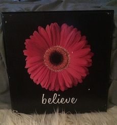 Gerber Daisy Believe sign