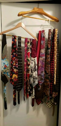Lot of Assorted Mens Neck Ties Charlotte, 28270
