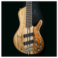Cort SCMS A5 Pluss Bass Guitar