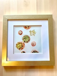 Gold Frame With Succulent Image