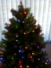 Lighted Christmas Tree with remote control