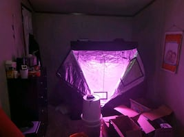 60X48X24 indoor grow tent WITH 1000W full spec single chip led light