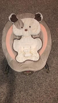 Fisher Price Deluxe Baby Bouncer Gainesville, 20155