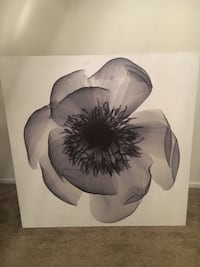 white and black petal flower painting