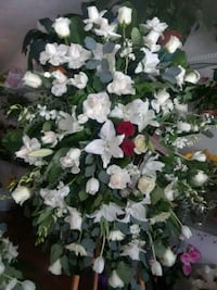 Fresh.flowers.100$. [TL_HIDDEN] .funeral Cypress, 90630