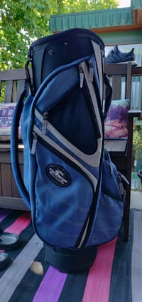 Cobra golf bag. Spotless. It's a cart bag so there