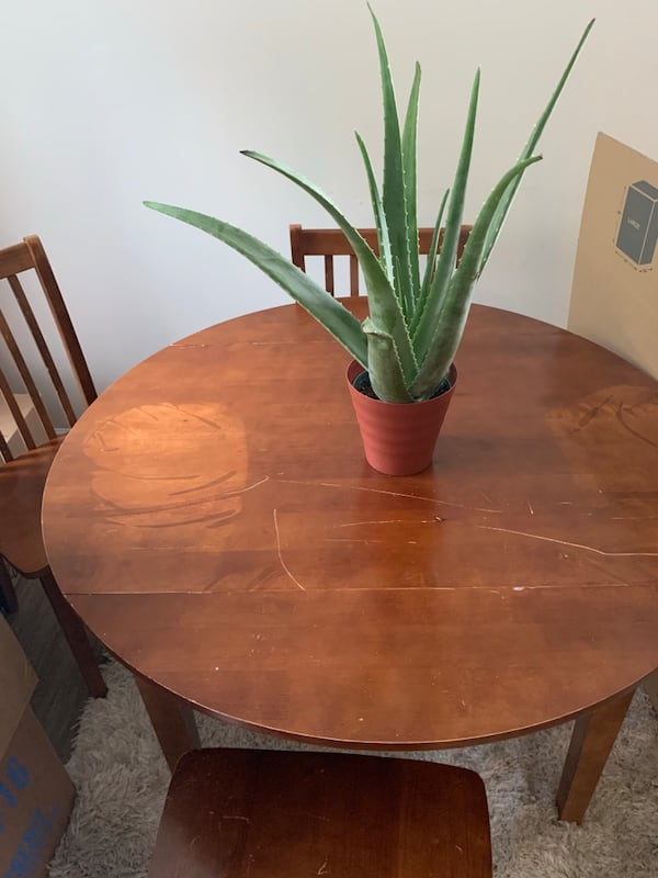 Wood table great for repurposed has scratches folds into a two seated table... moving need gone by 8/19 fd5955a7-4907-47ed-8f3a-bd8c70623307