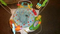 Fisher-Price Zoo Party Jumperoo for Sale