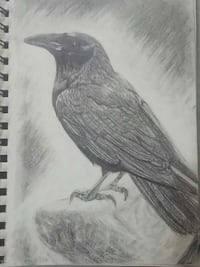 Used crow pencil sketch for sale in saint constant letgo