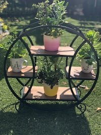 Beautiful succulent arrangement with beautiful plant stand  Los Angeles, 91605