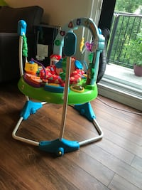 Fisher Price baby jumperoo Guelph, N1H 8H1