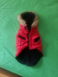 Small dog jacket Mississauga