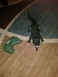 Remote control Alligator. Fun fun fun. Springfield, 97477