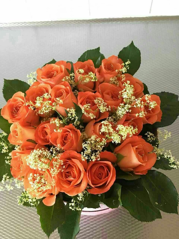Orange rosa blommor