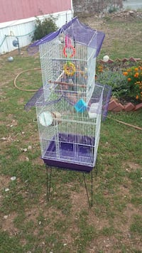 two purple and white bird cages