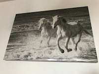 Black&White canvas of two horses New York, 11235