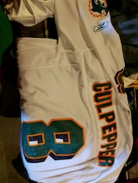 Dolphins NFL Jersey  Clarion, 16214
