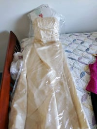 Formal dress, champagne color, sz 9 Lancaster