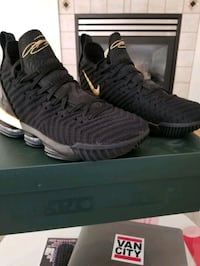 LeBron 16  Langley City, V2Y 2Y4