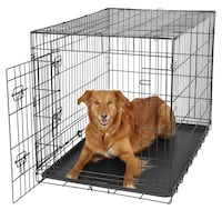 Crate for Large dog Alexandria, 22312