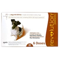 Revolution for Dogs (3pk) New Orleans, 70114