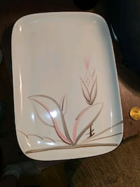 Winfield hand painted China made in USA dragonflower set