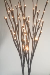 "Light Branches battery operated indoor/ outdoor decor 34"" tall Frederick, 21703"