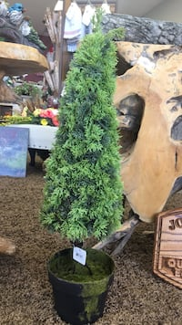 $10.00 each or case of 9 for $80.00.  30 inch potted pine. Artificial