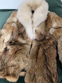 Coyote fur coat  Washington, 20001