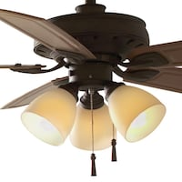 Hampton Bay Tucson 48 in. Indoor/Outdoor Oil Rubbed Bronze Ceiling Fan with Light Kit and Shatter Resistant Shades  new  Dallas