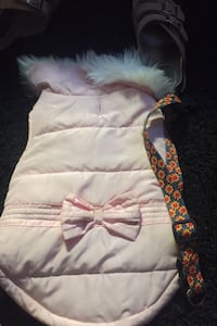 Size large  dog vest and coller