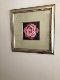 Pink Rose framed art Harpers Ferry, 25425