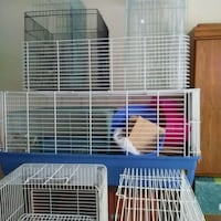 Rabbit Cages Large & Xlge. New & Gently Used Edmonton, T5B 2W3