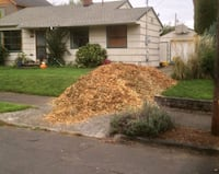 Free Free Woodchip Suffolk County  East Northport