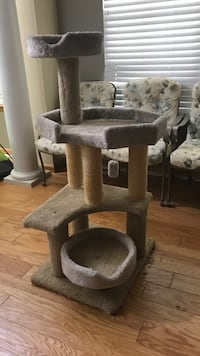 brown and gray cat tree Centennial, 80016