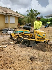 Stump grinding and tree service